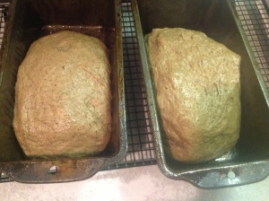 formed loaves